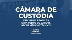 Câmara Municipal de Custódia-PE. Disciplinas Básicas para Todos os Cargos de Nível (Médio e Técnico)